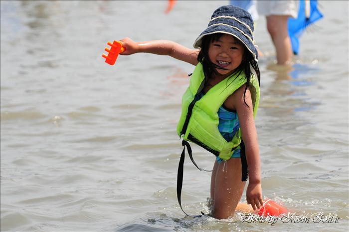 西条市のイベント 第10回西条市立て干し網2010年の予定 河原津海岸 愛媛県西条市河原津 2009年6月7日