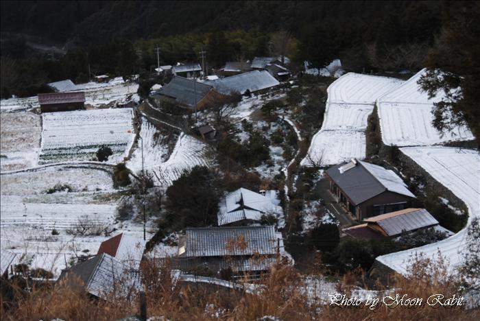 愛媛県西条市千町(せんじょう)千町山 2010年1月13日