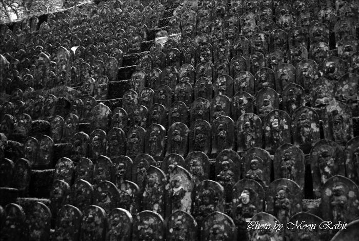 久万高原町 岩屋寺・大寶寺・古岩屋(ふるいわや)の奇岩・古岩屋温泉・国民宿舎古岩屋荘・住吉神社 --写真は-- 久万高原町の寺院・神社 岩屋寺 四国霊場(四国八十八箇所)45番札所 愛媛県上浮穴郡久万高原町七鳥1468 2010年3月27日