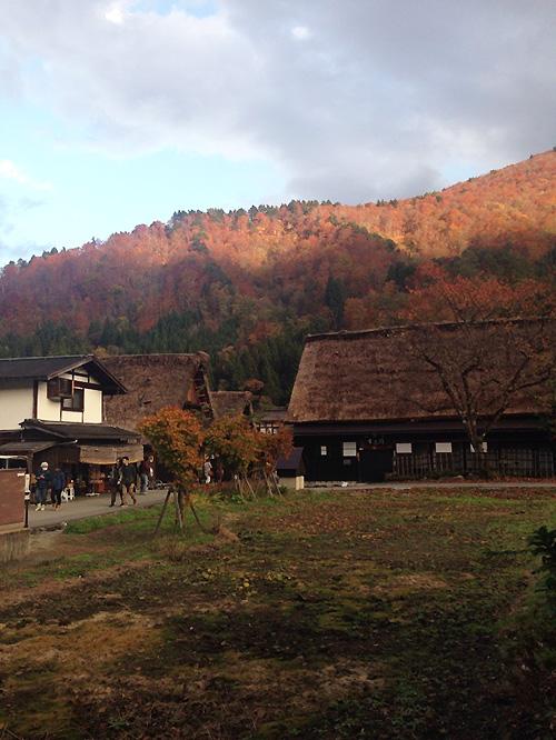 2013-11-10-2.jpg