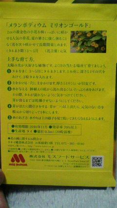 20100311モスの種2