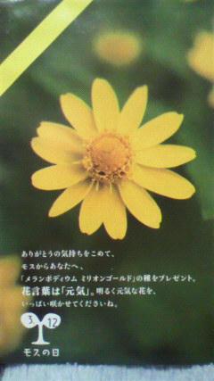 20100311モスの種1