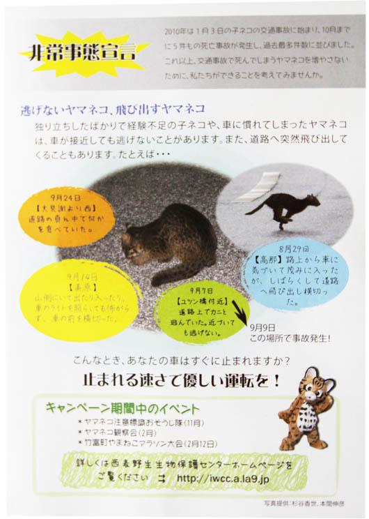 イリオモテヤマネコ 非常事態宣言|西表野生生物保護センターちらし