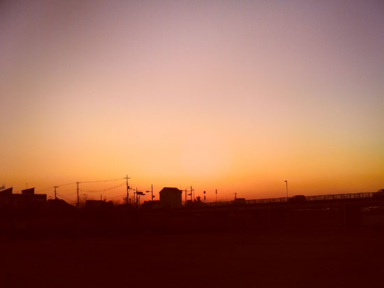 yashica101102.jpg