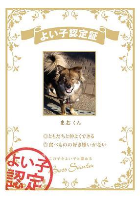certification_07bce55d.jpg
