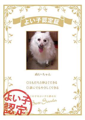 certification_97b49059.jpg