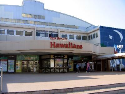 hawaiian16iri.jpg