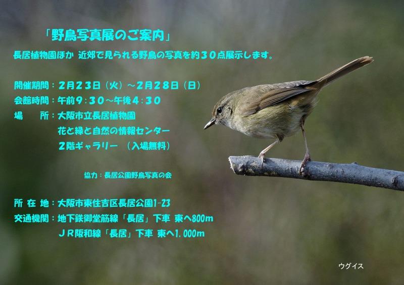 b41613-2_edited-2.jpg