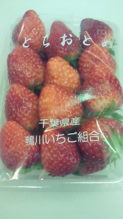 NEC_0530.jpg