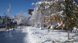 snow1_convert_20091122025644.jpg
