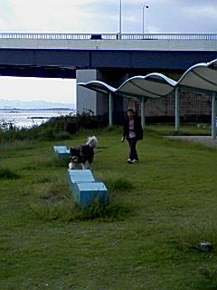 琵琶湖2011.0925-2