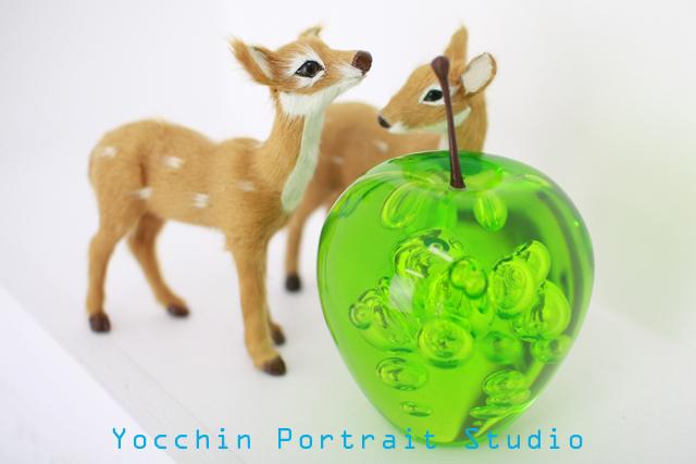 青リンゴと鹿2