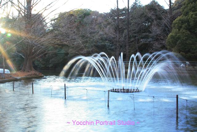 大宮公園 噴水