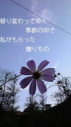 2010092116080000.jpg