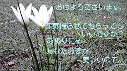 2010101907580000.jpg