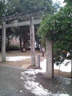 008_20100110225803.jpg