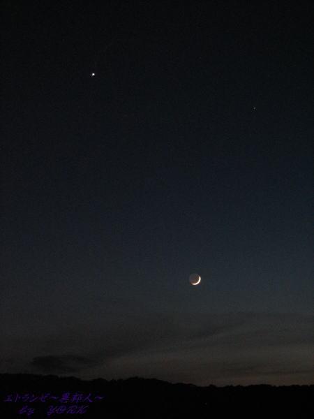7188月と金星100614