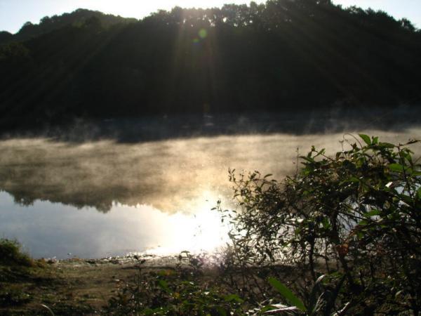 8810朝靄の浮かぶ新池101027