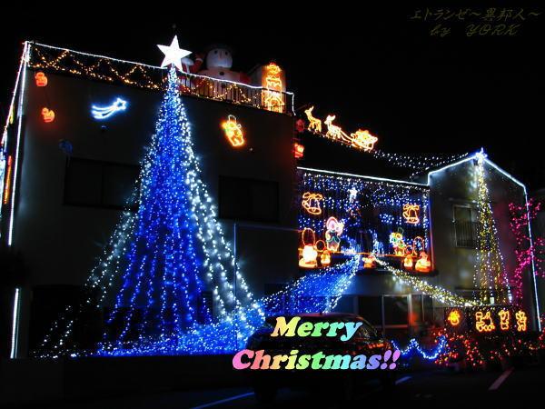 9217 Christmasイルミネーション101219