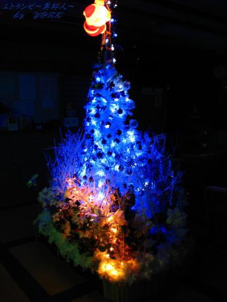 9145Christmas tree2010 20101219