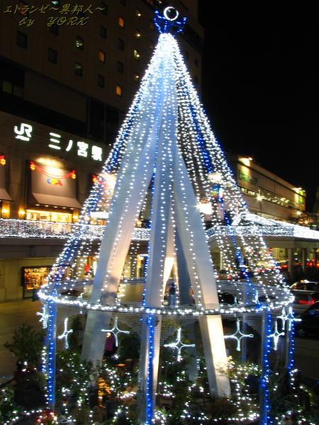 9177Christmas tree三宮101219