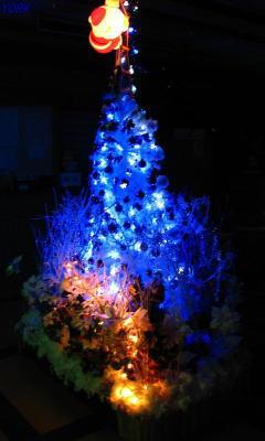 携帯用 9145Christmas tree2010 240×400