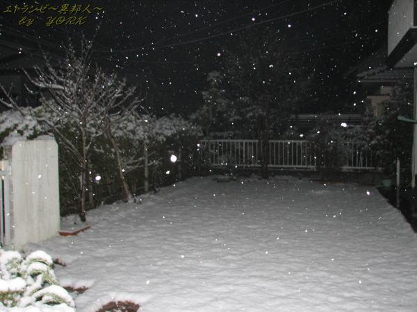 9599一面の雪110215