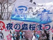 さくらYOSAKOI  2010-6