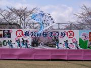 さくらYOSAKOI  2010-4
