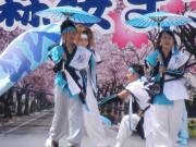さくらYOSAKOI  2010-5