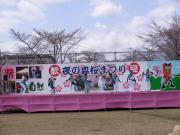 さくらYOSAKOI  2010-2