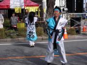 さくらYOSAKOI  2010-16
