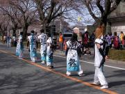 さくらYOSAKOI  2010-14