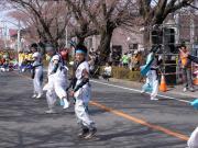 さくらYOSAKOI  2010-15