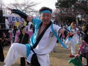 さくらYOSAKOI  2010-24