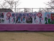 さくらYOSAKOI  2010-20