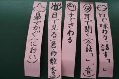 2009_11_30_004.jpg