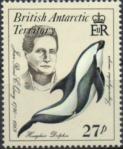 英領南極・イルカ