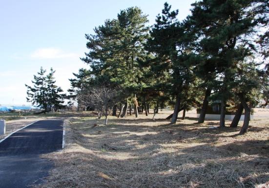 和田公園06