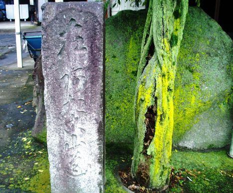 atagoyama01_20110617191901.jpg
