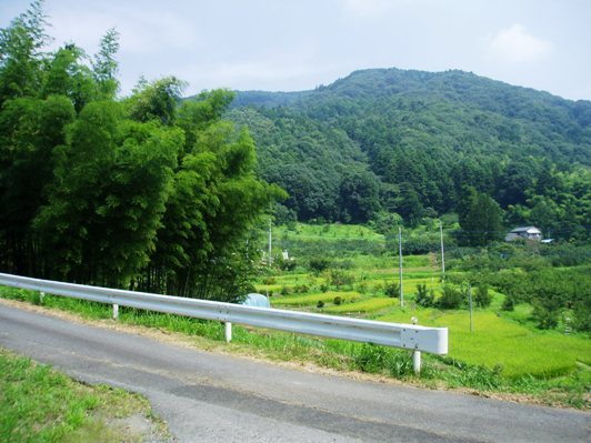 atsumo06.jpg