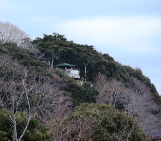 ayumizaki.jpg