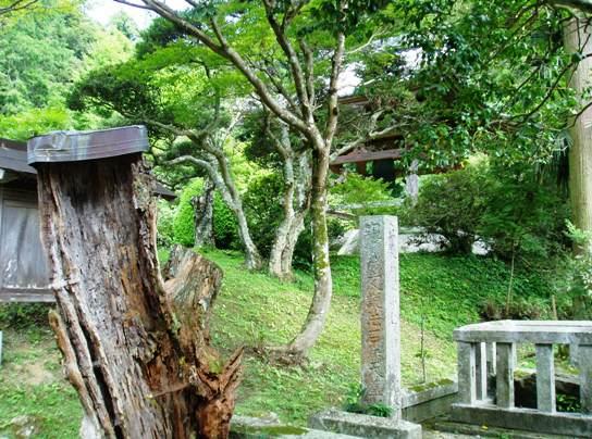 daigakuji04.jpg