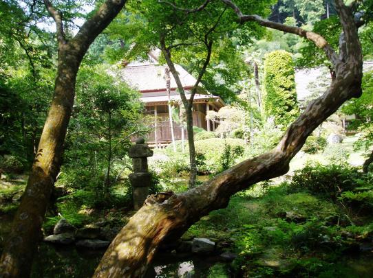 daigakuji16.jpg