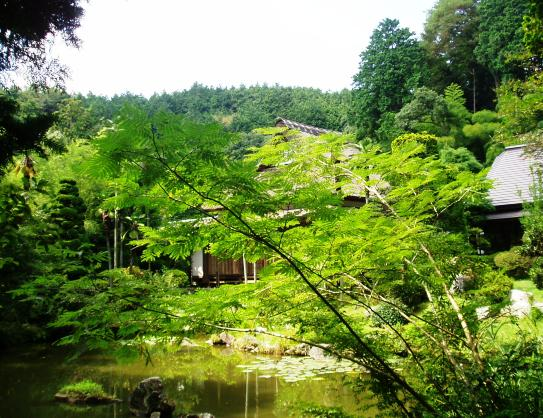 daigakuji17.jpg