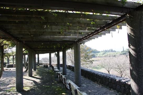 fudoki02_20111029205459.jpg