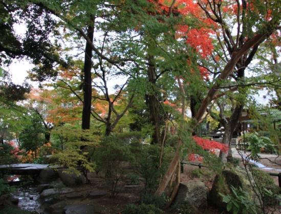 gassanji03_20111121190653.jpg
