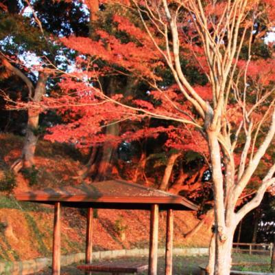haguroyama03.jpg