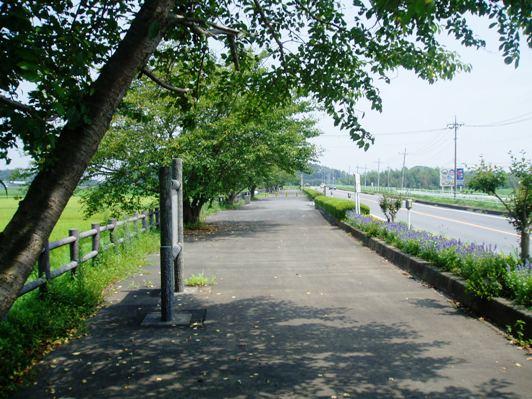 iwamakaido01.jpg
