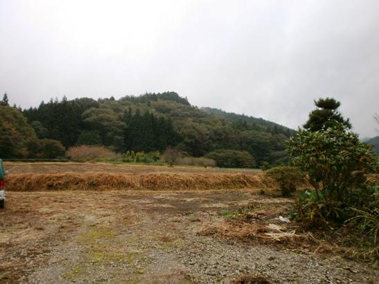 kajika03.jpg